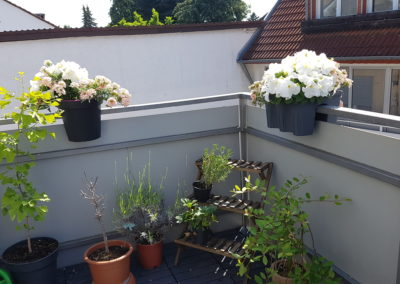 Vorderhaus DG Balkon